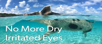 EasyFit for Dry Eye